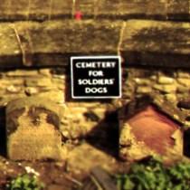 Cementerio Perros Castillo Edimburgo