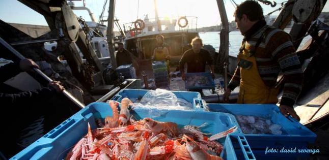 puerto pesquero villajoyosa