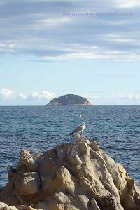 Isla Benidorm desde tierra