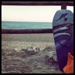 El tiburón se acerca al Paraíso