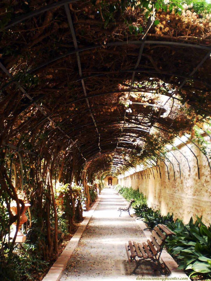 jardin valencia