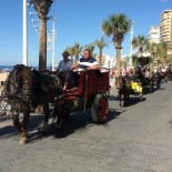 Los carromatos avanzando por la playa de Levante de Benidorm en San Isidro