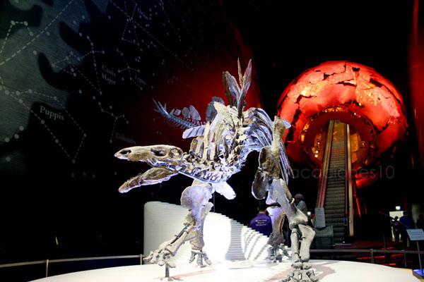 dinosaurio